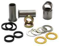 Swingarm bearings